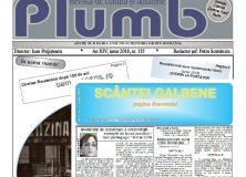 """Revista """"Plumb"""" şi revista """"Scântei Galbene"""" – iunie 2018"""