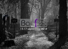 """Bac-Fest. Festivalul Național """"George Bacovia"""" 2018"""