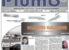 """Revista """"Plumb"""" şi revista """"Scântei Galbene"""" – octombrie 2018"""