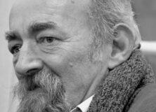 In memoriam Emil Niculescu